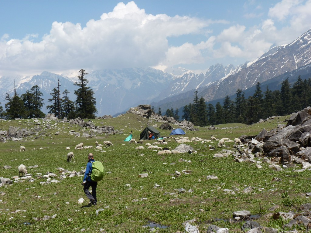 Khulara Campsite on the Kuari Pass Trek
