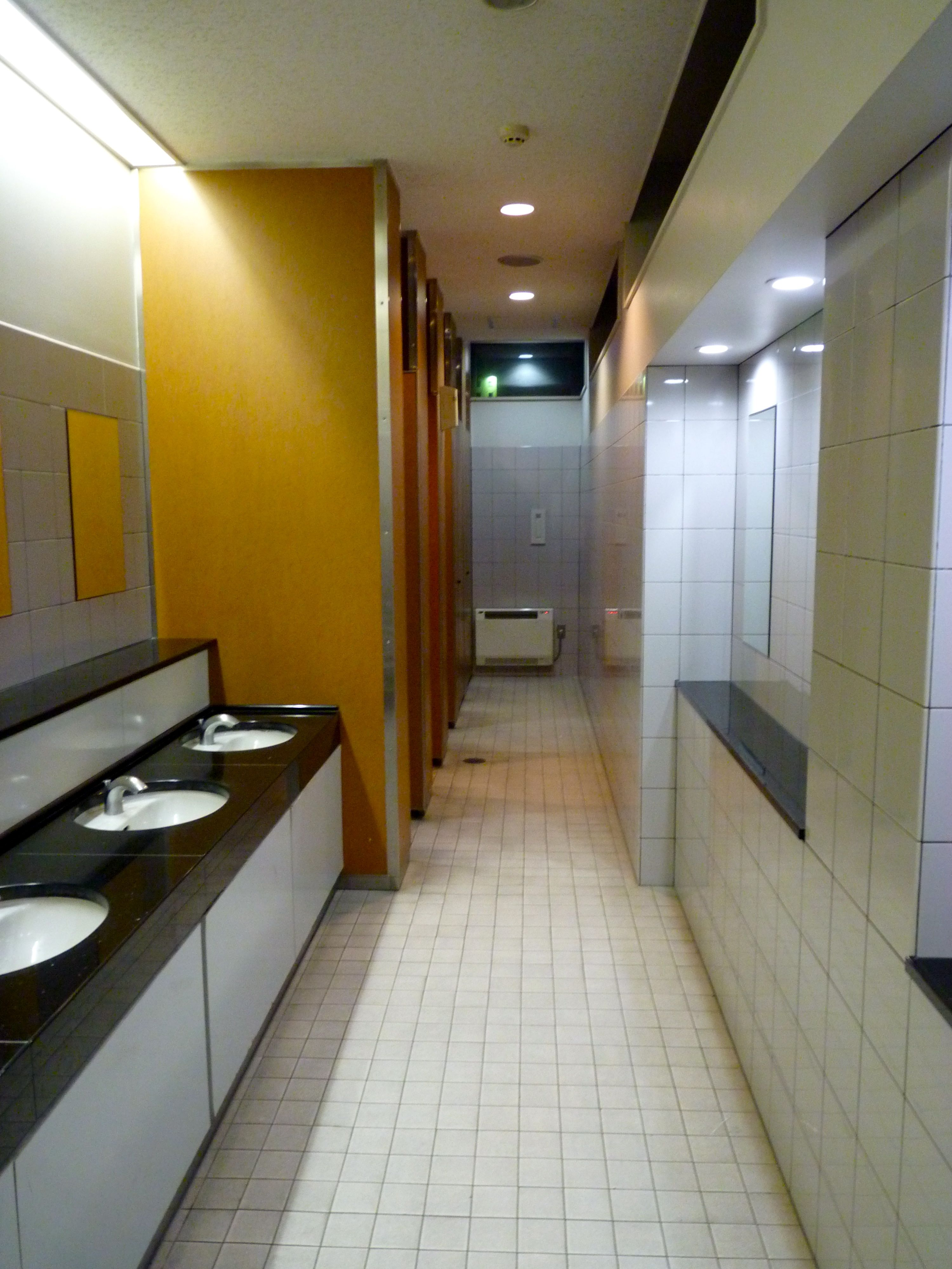 The Exceptional Qualities of Ladies' Rooms in Japan