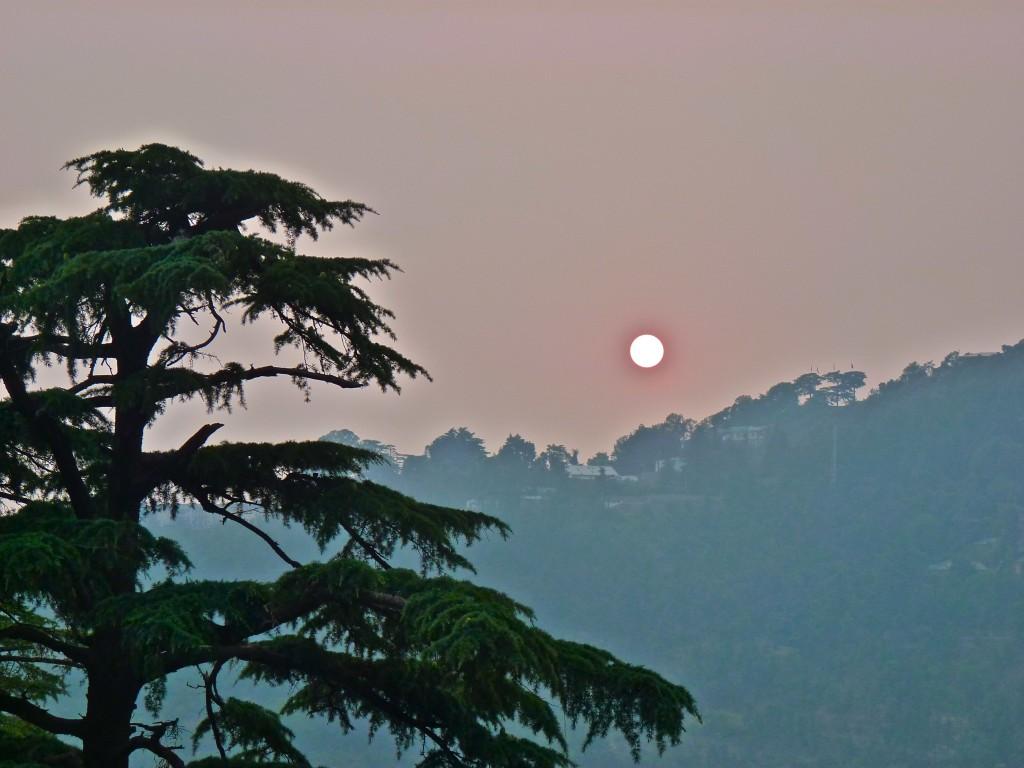 Dharamkot sunset