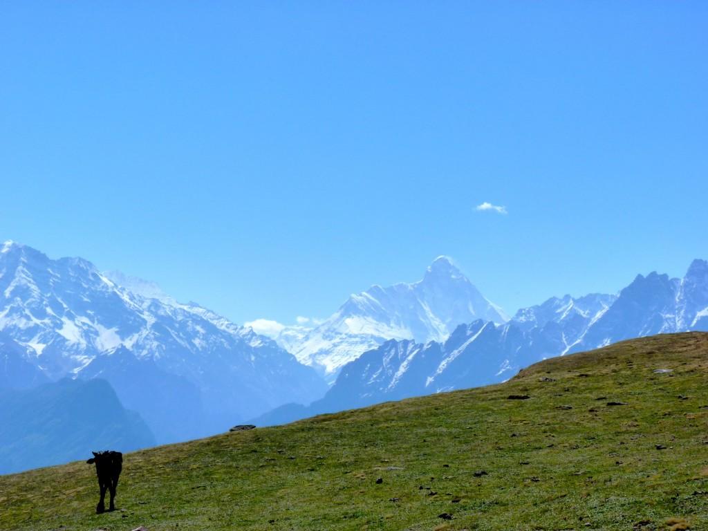 View of the Nanda Devi