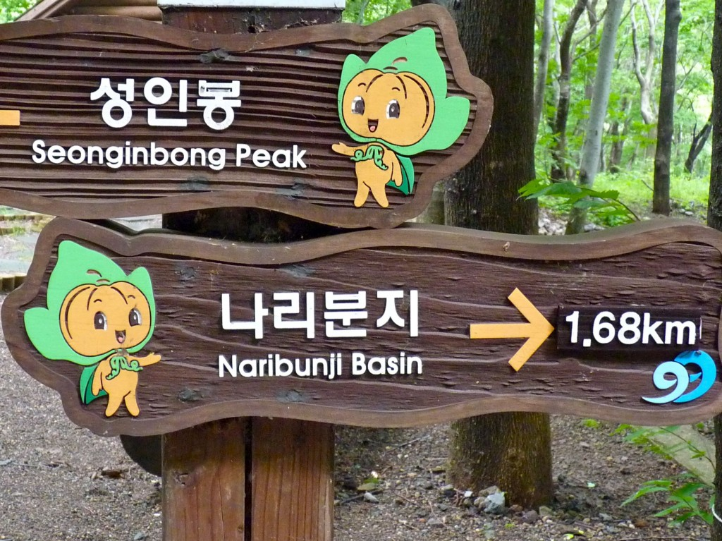 Even Ulleungdo's cute pumpkin mascot is super-helpful
